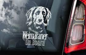 Weimaraner Car Sticker Vorstehhund Dog Long Haired Window Sign Decal Gift V02 Ebay