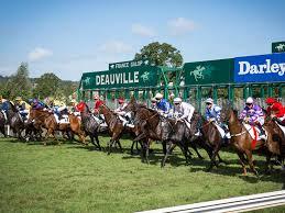 Courses hippiques Deauville-La Touques à Deauville (14800) - Tous ...
