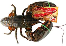 How to Cook the Perfect Lobster ...