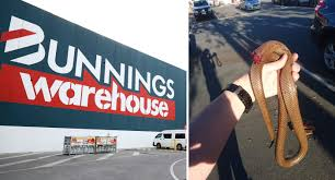 Outrage Over Abhorrent Act In Bunnings Carpark