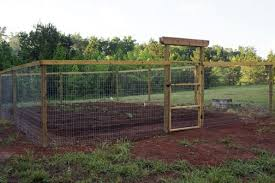 Garden Fence Idea I Want This For My Garden No More Stepping Over High Rabbit Fencing Oh My Goodness I Deer Resistant Garden Diy Garden Fence Garden Fence