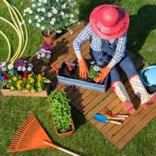 certificate in garden design