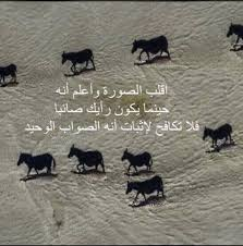 صور غريبة و مضحكة Esta Com Amin Zouhir صور غريبة و مضحكة