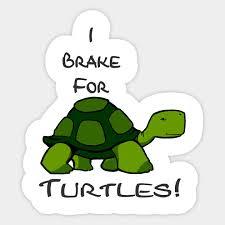 I Brake For Turtles Sticker Turtle Sticker Teepublic