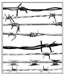 20 Barbed Wire Drawings Ideas Barbed Wire Barbed Wire Drawing Wire Drawing