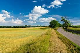 Результат пошуку зображень за запитом картинки земельні відносини
