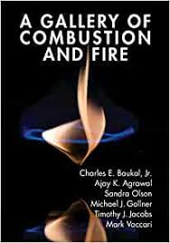 Amazon.com: A Gallery of Combustion and Fire (9781107154971): Baukal Jr.,  Charles, Agarwal, Ajay K., Olson, Sandra, Gollner, Michael, Jacobs, Timothy  J., Vaccari, Mark: Books