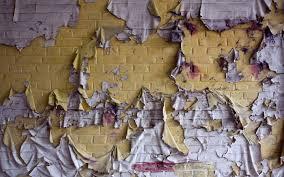 46 torn wallpaper wallerings on