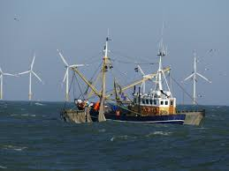 Opportunities and risks of wind farm growth for the fishing industry - WUR