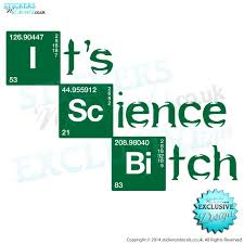 It S Science Bitch V1 Breaking Bad Vinyl Sticker Wall Decal