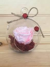 pink preserved rose terrarium hanging
