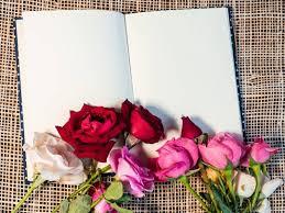 صور ورد مع كتب