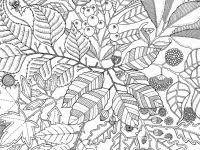 Mewarnai Mantap Djiwa Moeilijke Kleurplaten Voor Volwassenen Bloemen