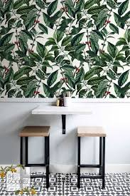 coffee beans wall mural arabica