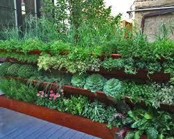 rooftop vegetable garden ideas hawk haven
