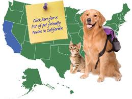 california pet friendly vacations