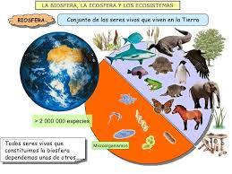 Resultado de imagen de La Biosfera
