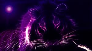 purple puter wallpapers on wallpaperplay
