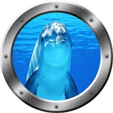 Amazon Com Porpoise Wall Decal Dolphin Porthole 3d Wall Sticker Peel And Stick Decor Vwaq Sp29 14 Diameter Home Kitchen