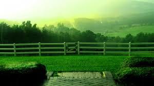 beautiful rain view wallpaper hd