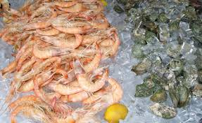 Fort Myers Seafood & Music Festival ...