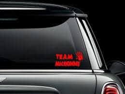 Team Michonne The Walking Dead Custom Car Truck Van Window Or Etsy