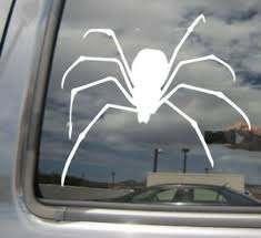 Black Widow Spider 2 Venom Car Laptop Bumper Window Vinyl Decal Sticker 01420 Ebay