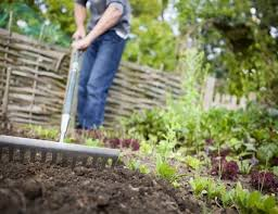 understanding clay soil and how to