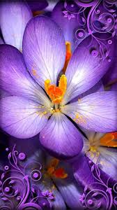 android wallpaper purple flowers