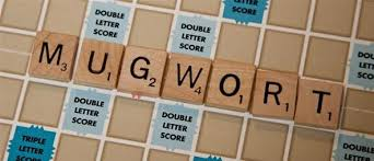 score big with simple 2 letter words