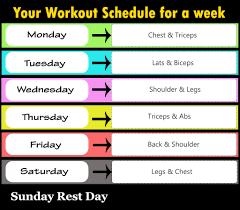 full week gym workout plan fitness