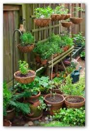 easy examples of container gardens