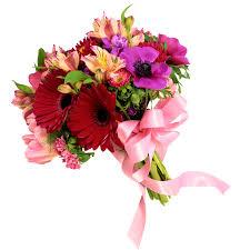 ازهار جميلة الورد جميل بالصور صور جميلة