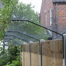 Cat Proofing Your Garden Ali S Animal Answers