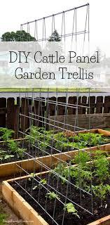 diy garden trellis frugal family home