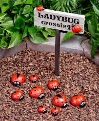 ladybug garden decor ltd modities