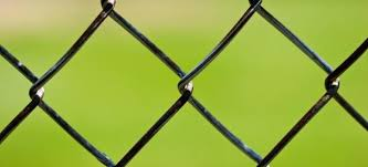 How To Beautify And Hide Your Chain Link Fence Doityourself Com