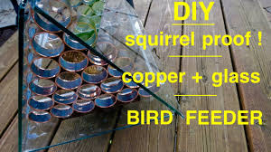 How To Make A Squirrel Proof Bird Feeder Youtube
