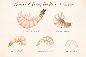 shrimp counts per pound and serving sizes