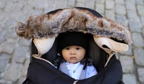 best infant car seat cover for winter