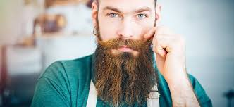 7 best beard mustache wa that give