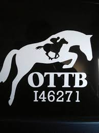 Custom Vinyl Decals For Vehicle Tack Trunk Trailer Home Laptop Or Just About Anywhere Strut Your Ottb Stuff With Thes Horse Quotes Horse Love Horse Life