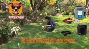 Top 9 Best Wireless Dog Fence Reviews Best Top Care With Dogs