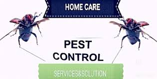 Home Care Pest Control Services And Solutions, Secunderabad - Residential  Pest Control Services in Hyderabad - Justdial