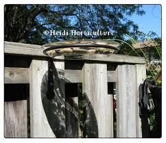 Diy Bird Bath For The Fence Or Deck Railing Diy Bird Bath Bird Bath Deck Railings