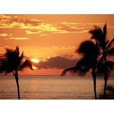 Sunrise And Sunsets Wall Decals 095