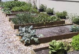 raised bed vegetable gardening for cool