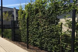 Wire Fence Panels Different Uses Examples How To