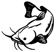 Catfish Decals Wd 077 Vinyl Fishing Window Stickers Wildlife Decal