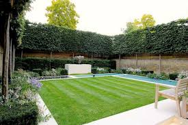 privacy fences or screens for your yard